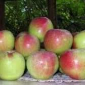 Як продовжити термін зберігання яблук