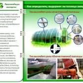 Як вибрати готову полікарбонатну теплицю: короткий лікнеп і корисні поради