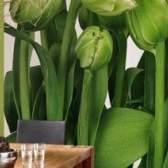 Скільки коштує поклеїти шпалери в квартирі?