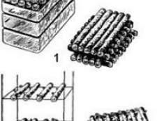 Як вирощувати гриби спітаку і вольварієлла