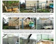 Кращі конструкції теплиць для вирощування огірків: перевірені часом варіанти