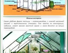 Облаштування теплиці з полікарбонату всередині: секрети правильного зонування