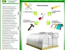 Збірка і установка теплиці з полікарбонату: корисні поради для «самоделкиних»