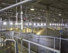 Завод basf в санкт-петербурзі запустив нову виробничу лінію